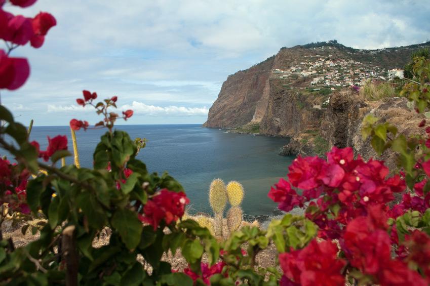 Madère ou l'île au fleur