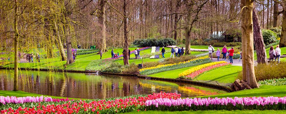Où admirer les plus belles floraisons ?